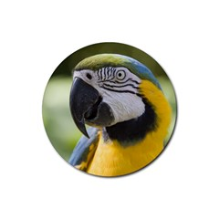 Handsome Parrot Rubber Round Coaster (4 pack) from MallPress.com Wholesale Dropship Stores Front