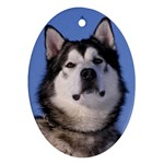 Alaskan Malamute Dog Ornament (Oval)