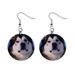 Alaskan Malamute Dog 1  Button Earrings