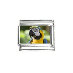 Parrot Italian Charm (9mm) from MallPress.com Wholesale Dropship Stores Front