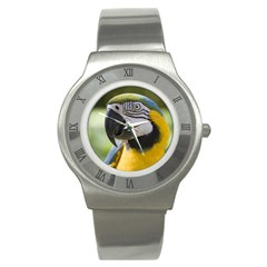 Parrot Stainless Steel Watch from MallPress.com Wholesale Dropship Stores Front