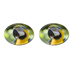 Parrot Cufflinks (Oval) from MallPress.com Wholesale Dropship Stores Front(Pair)
