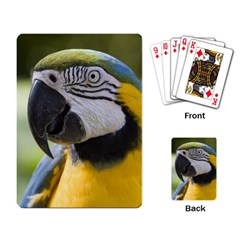 Parrot Playing Cards Single Design from MallPress.com Wholesale Dropship Stores Back
